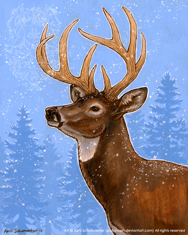 Winter Whitetail by pallanoph