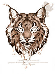 Iberian Lynx: Drifting by pallanoph