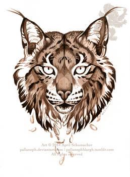 Iberian Lynx: Drifting