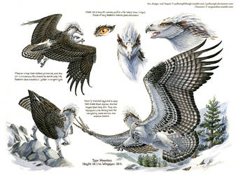Custom Aequis: Mountain Osprey by pallanoph