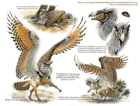 Custom Aequis: Desert Rufous-Legged Owl