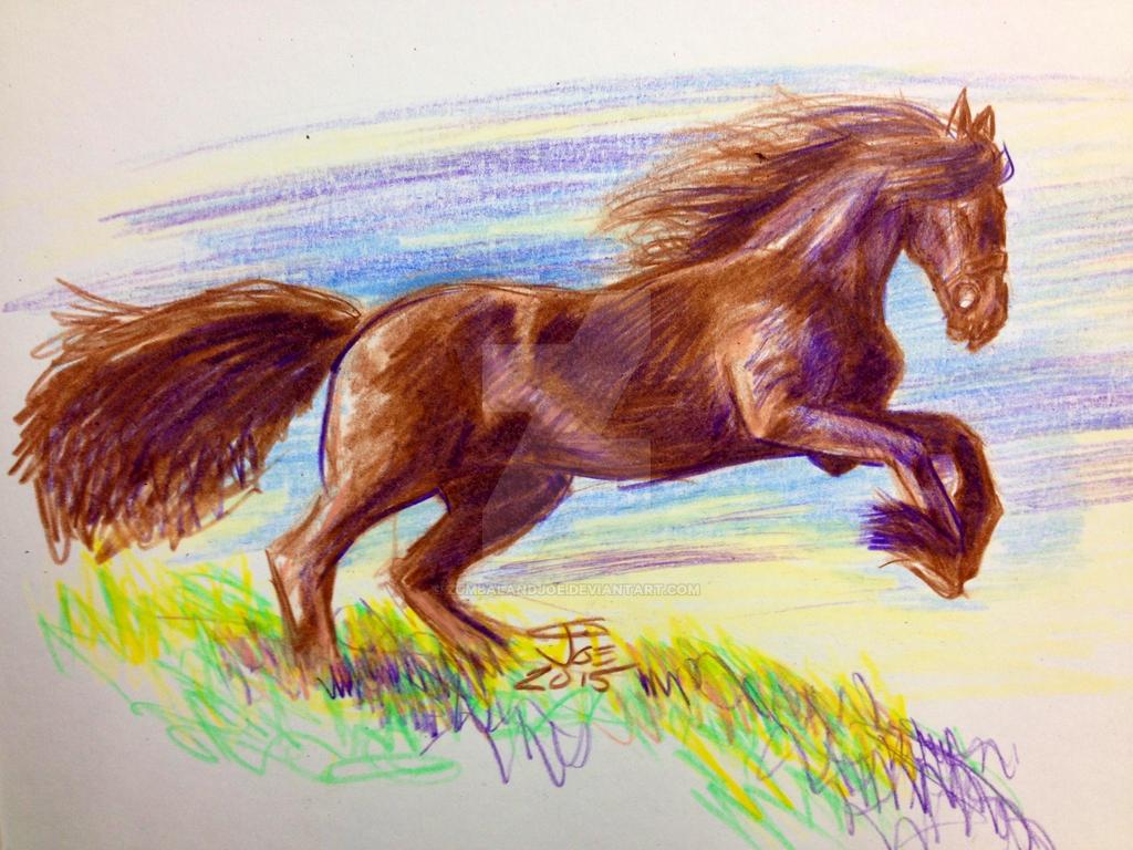 Colored Pencil Horse Drawings Colored Pencil Quick Horse Study By Zumbalandjoe On Deviantart