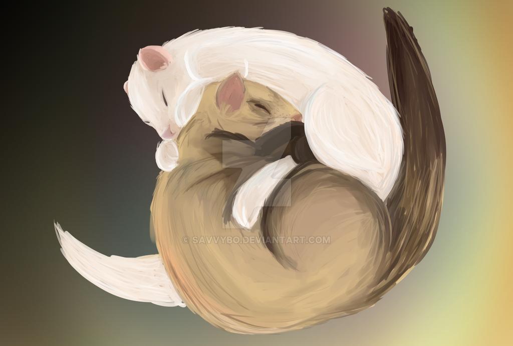 Commission Ferrets by savvybo