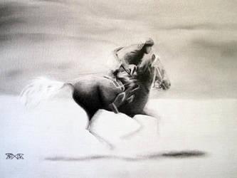 Flying horseman by cloudmilk