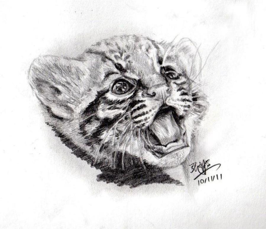 Pencil sketch of cute ...