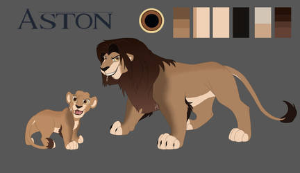 Aston Reference Sheet COMM