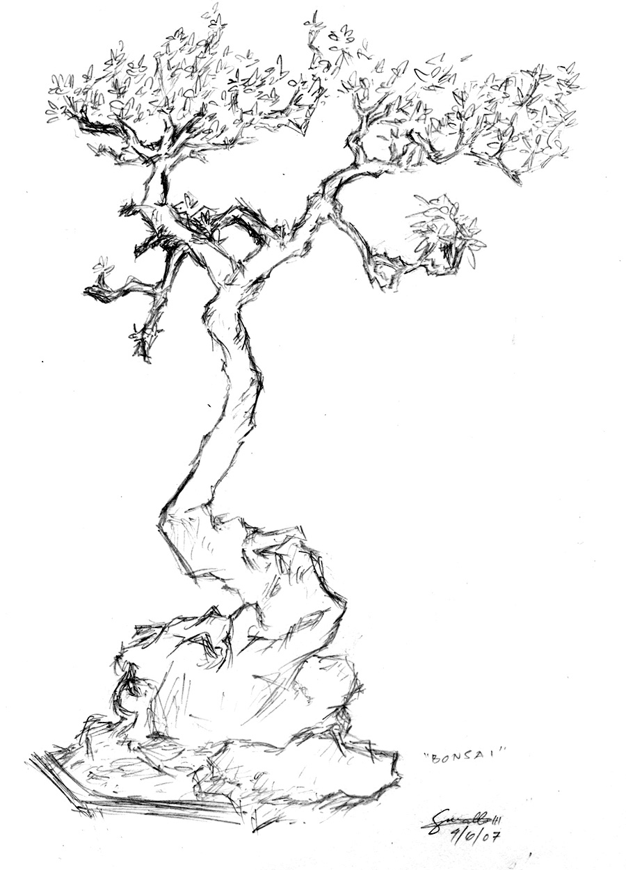 Line Drawing Tree Tattoo : The gallery for gt cherry bonsai tree