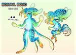 Bobtail squid design CLOSED