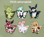 Moth adopts ON HOLD