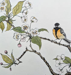 Ukiyo-e tit and blossom