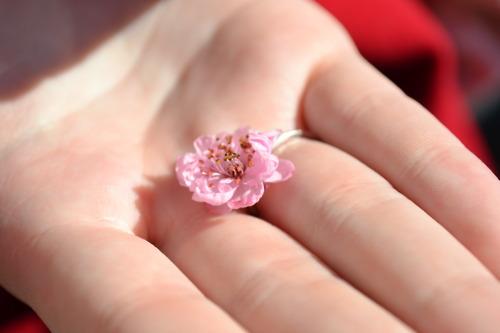 Little Flower by Jesse-FanGirl