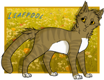 100 Warrior Cats Challange - #9: Leafpool