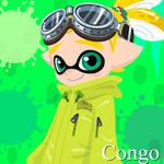 T Congo (Splattale)