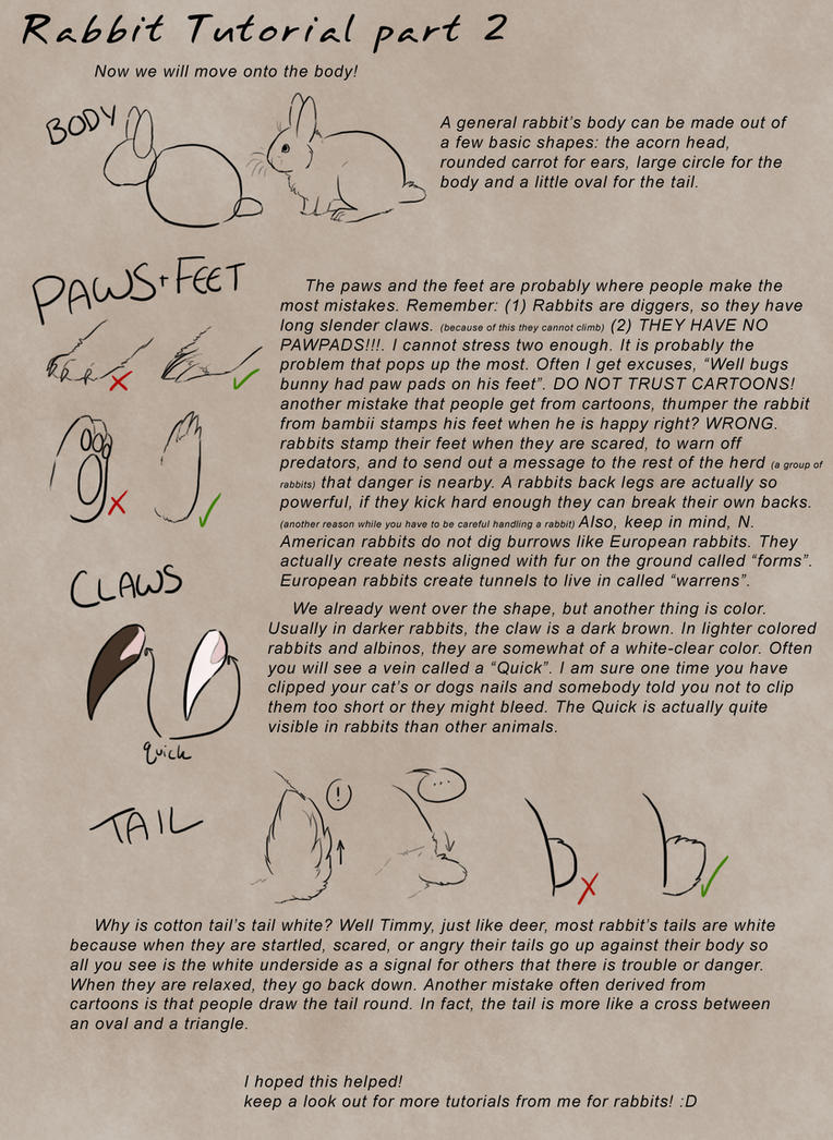 Rabbit Tutorial Part 2 by Kium