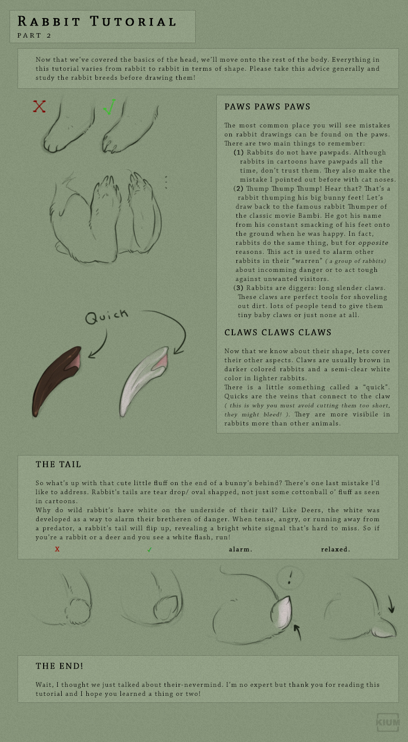 Rabbit tutorial part 2/2 by Kium