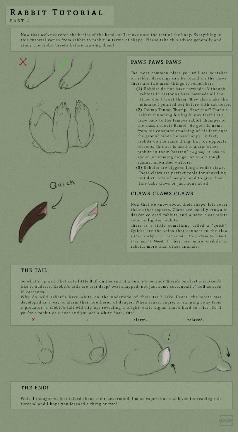 Rabbit tutorial part 2/2 by Kium