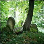 Jewish Cementary