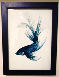 Watercolour Siamese Fighting Fish by canned-sardines