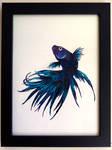 Watercolour Siamese Fighting Fish 2