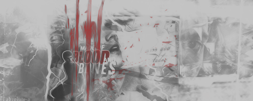 Blood and bones |Signature| by Absolute-A