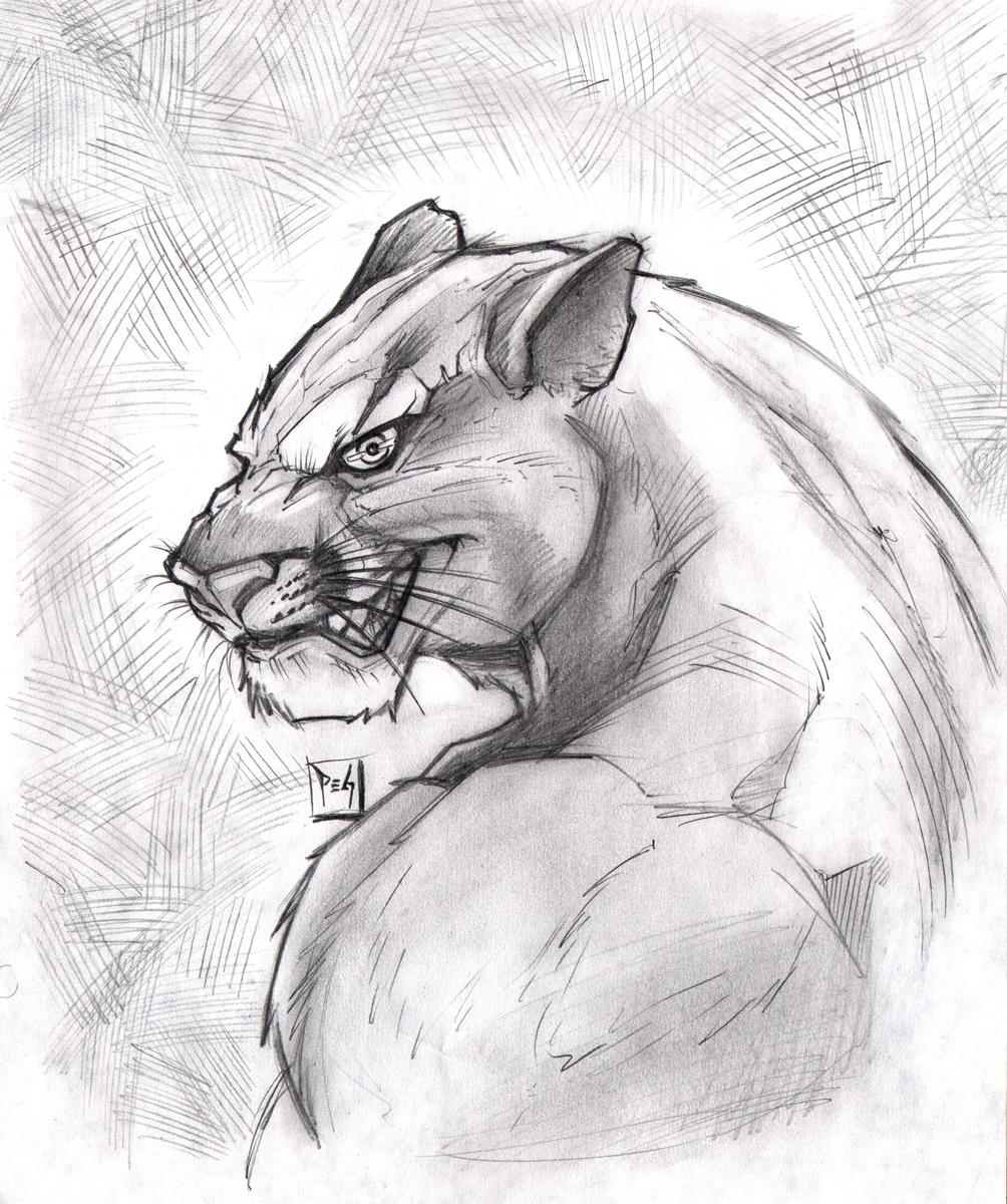 Commission Puma By Madmagnus On Deviantart