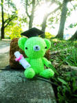 Graduation Teddy Ami