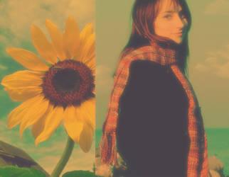 Sunflower II by rinoatimber