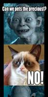 Smeagol Grumpy Cat