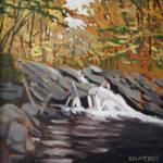 Ruiter Brook Falls