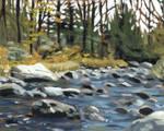 Ruiter Brook 3