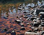 Ausable River Rocks