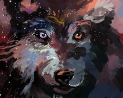 Space + Wolf