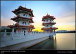 Chinese Gardens 100511