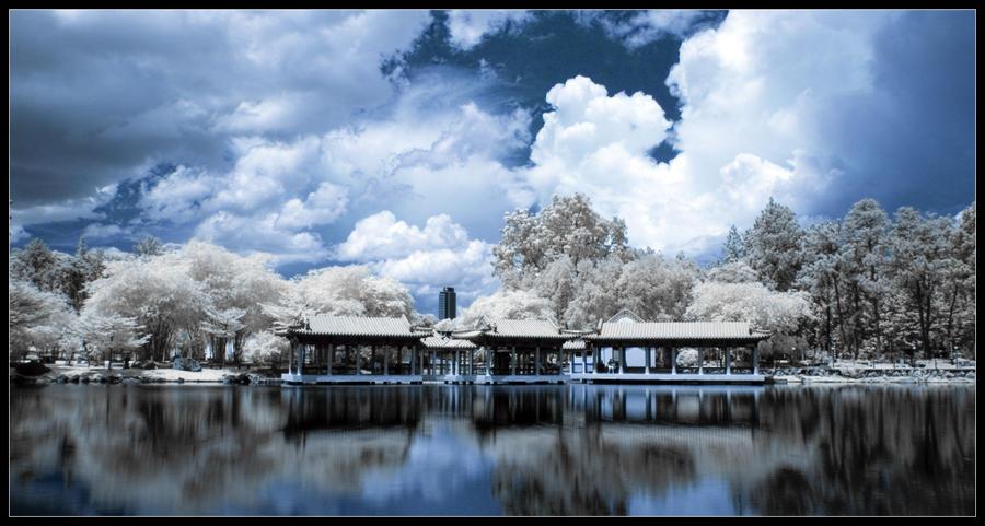 chinese gardens pond by inckurei