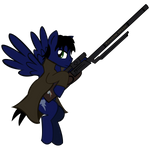 Sharpshooter Fallout Equestria