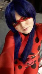 Miraculous - Ladybug by Aerblade