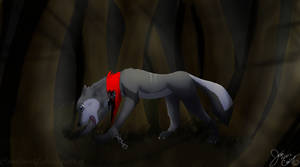 |Request,, Wolf| by Cooliwolf