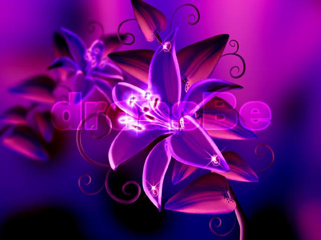 Magical Purple Flowers Www Pixshark Com Images
