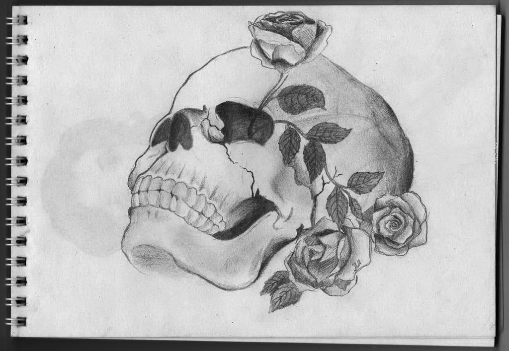 skull by Oureliua
