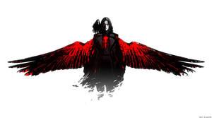wrb8 The Crow