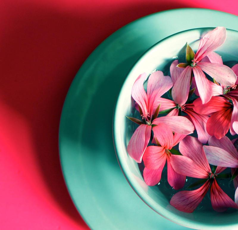 flowers in a cup by zoewiezo on deviantart