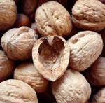 Nutty Love