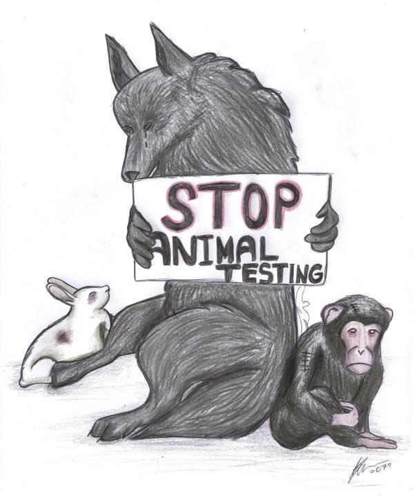 STOP ANIMAL TESTING favourites by Luppis-girl-Kiko on DeviantArt