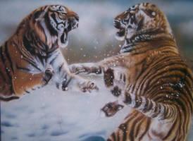 tigers by Evoke93