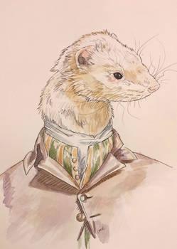 Bacchus the ferret