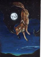 Night Coyote by SeaAngel2133