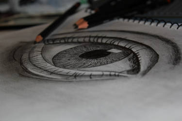 Drawn Realistic Eye by rake0062