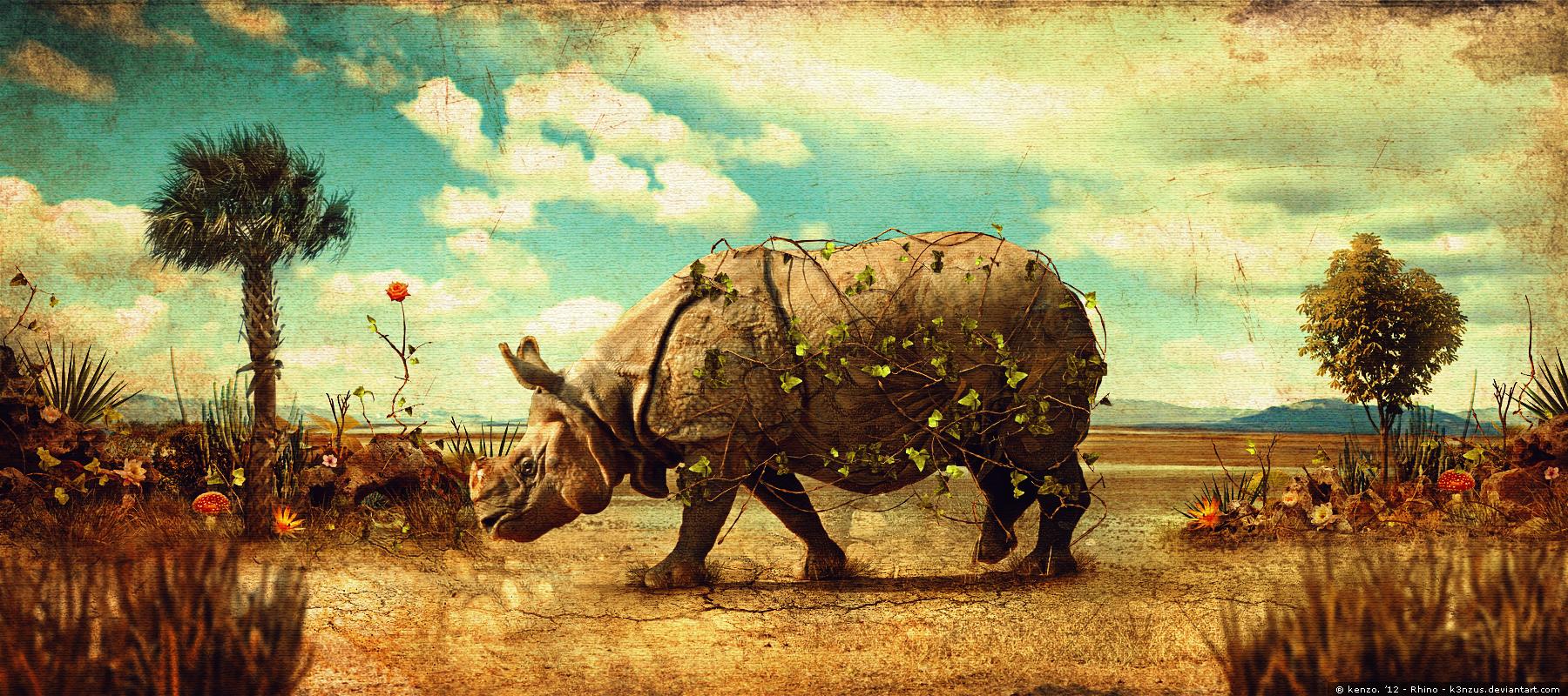 Rhino by K3nzuS