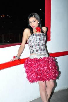 Recycled dress (I)