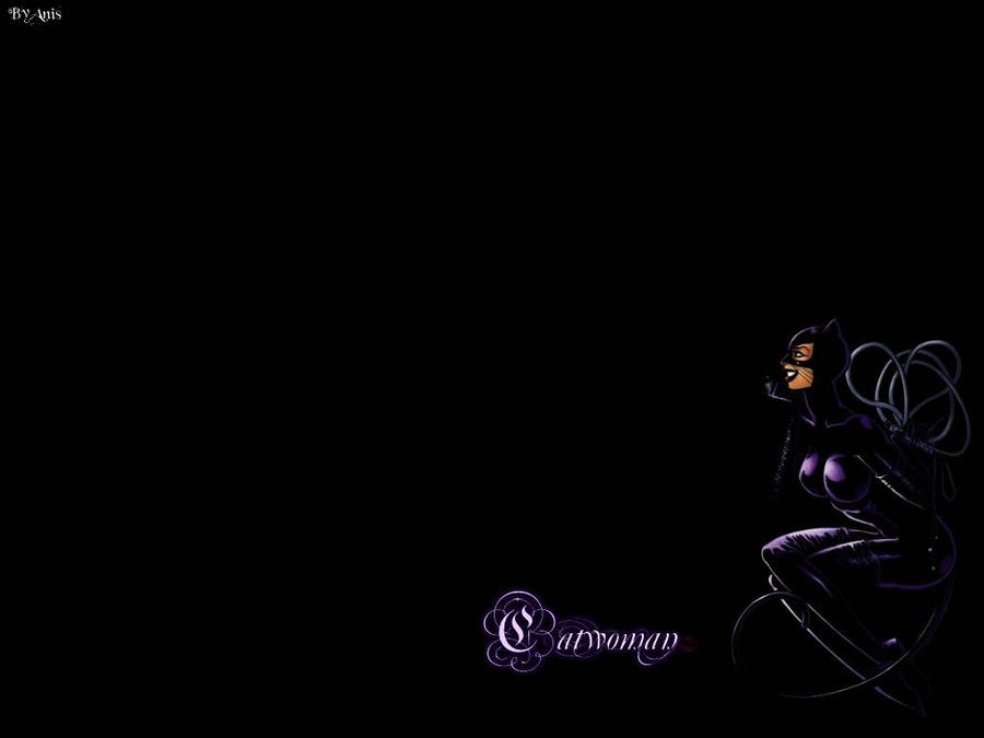 Catwoman Wallpaper 10 by Anita255 on DeviantArt